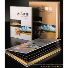Catálogo de impresión Folleto de folleto / Servicios de impresión / Impresora