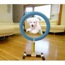 Indoor Outdoor Pet Training Equipment