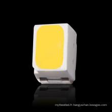 Diode électroluminescente élevée de la dissipation SMD 3020 SMD LED pour le downlight de LED
