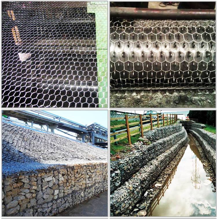 hot selling hexagonal wire netting anping factory