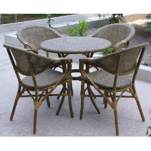 Muebles de jardín al aire libre hechos en fábrica de la silla de China (D593; S293)