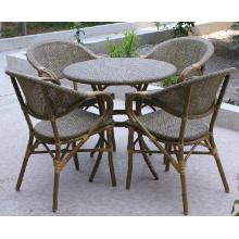 Mobília de jardim ao ar livre fabricada na China Chair Factory (D593; S293)