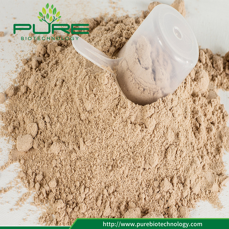 100% Natural Tribulus Terrestris Plant Fruit Extract Powder (2)