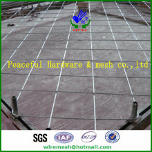Protection contre les pentes Net / Wire Mesh pour la protection contre les pentes / Rock Fall Protection Wire Mesh