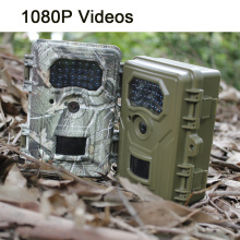 Utomhus Wildlife Tracking Camera