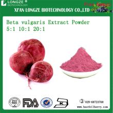 Beta vulgaris Root Extract Sugar beet Extract Powder 5:1 10:1 20:1 for heath ingredient supplement
