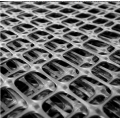 High Tensile Strength pp Plastic Biaxial Geogrid