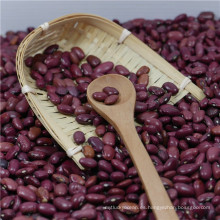 Nuevos cultivos 2017 Small Red Kidney Beans China of origin