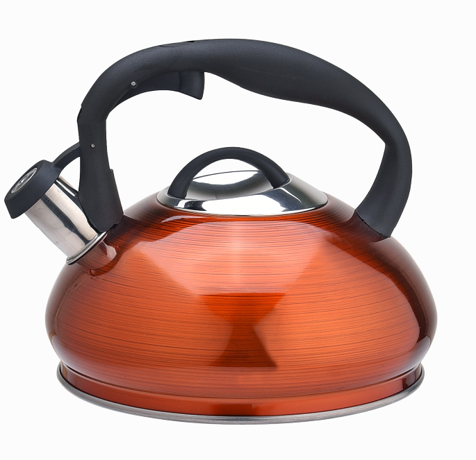 3d Coating Stainless Steel Tea Kettle Fh 465