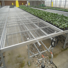 Manufacturer of for Greenhouse Seedling Nursery Bed Aluminum frame with hot galvanized greenhouse rolling bench export to Singapore Wholesale