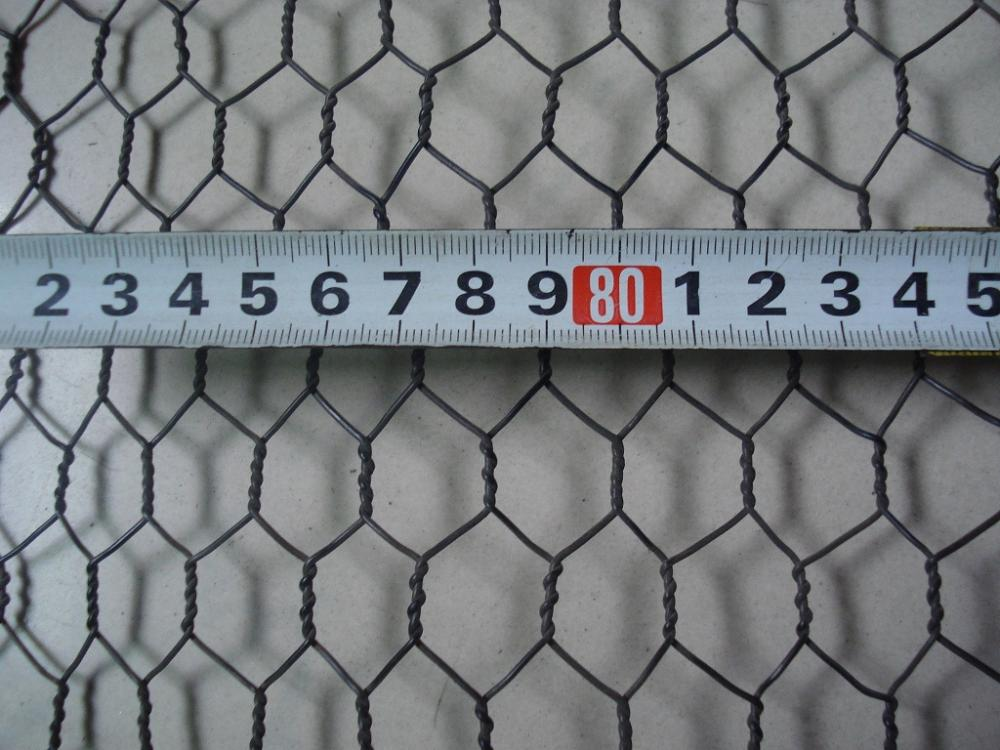 Mesh wire mesh galvanized