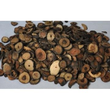 Natural Citrus Aurantium Extract Powder
