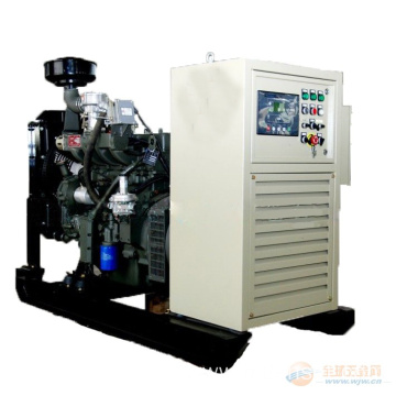 Good Quality for Natural Gas Power Generator 10kw to 100kw CE Approved Ricardo Natural Gas Generator supply to Turkey Factory