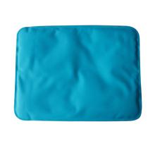 Venta caliente Cómodo PE paquete de frío y calor