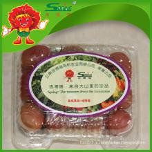 Tomate orgânico chinês de qualidade superior