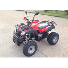 150cc automatische EWG Dienstprogramm Racing ATV (MDL 150 AUG)