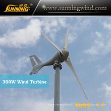 Générateur d'alternateur de vent de 300W 12V