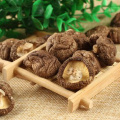 Wholesale Dried Mushrooms At Low Prices