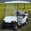 4 seats golf cart with gas or battery power for sale