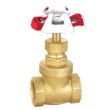 High quality brass gate valve thermostatic electric valve aortic valves