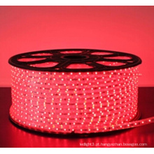 8MM 60 LEDs RGB flexível levou strip light 4.8W / m 220V