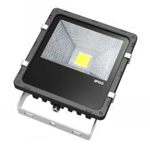 Lumière extérieure imperméable de Bridgelux LED de lumière d'inondation de la couleur 30W noire