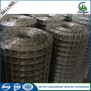 316L Hot Sale Stainless Steel dilas mesh