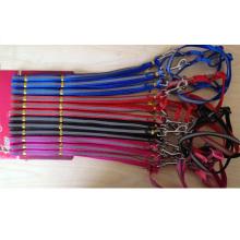 Pet Collar Pet Leash Pet Lead Reflective Strip Keep Dog Safe Rope Dog Training Leash