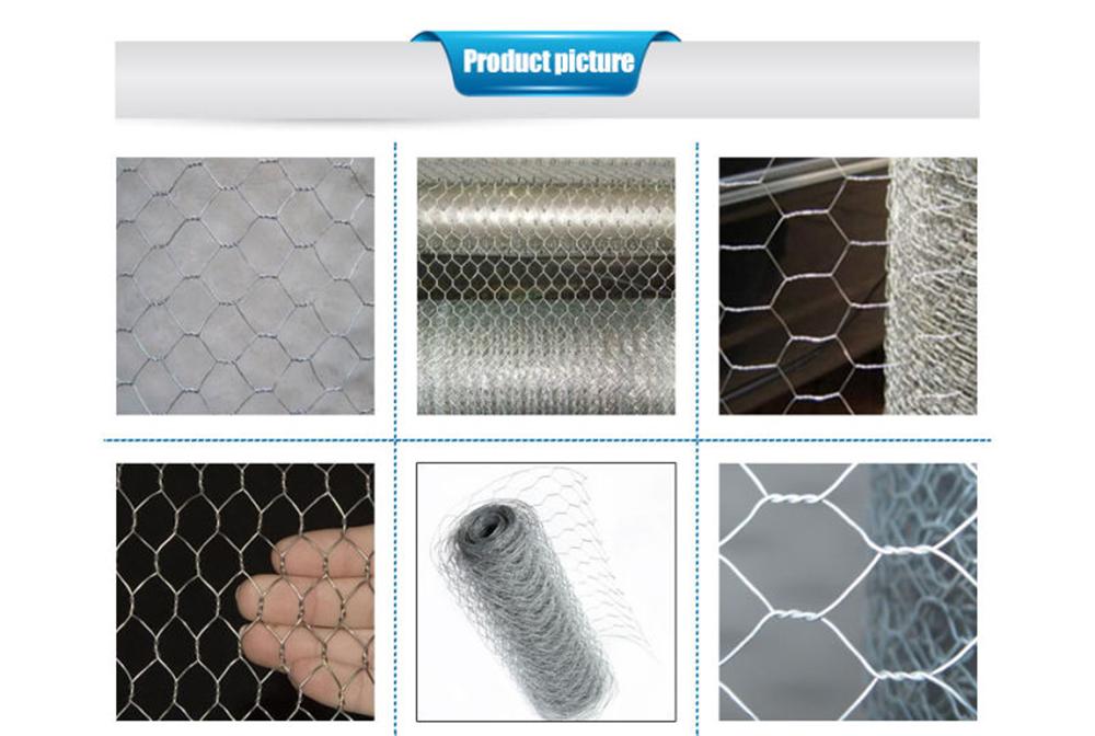 Multipurpose galvanized Hexagonal mesh wire 1/2 in netting chicken ...