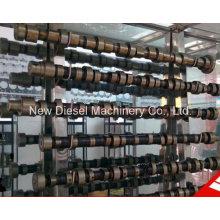 Piezas de repuesto del motor diesel Cummins 4BTA3.9c Cigüeñal 3908031