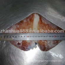 frozen seafood giant squid wing cleaned dosidicus gigas factory