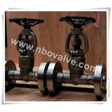 Válvula de porta forjada de alta pressão de 2500 lb (G47H)