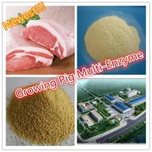 Meilleure enzyme multi spécialisée de porc de catégorie comestible de Thermolstability augmentant pendant le processus de granulation