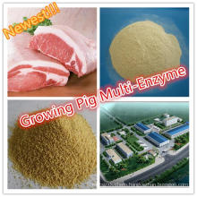 High Efficiency!! Feed Industry Growing Pig Specialized Multi Enzyme Factory Supplement