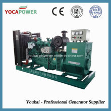 80kw / 100kVA kleine Diesel-Motor-Energie-elektrischer Generator