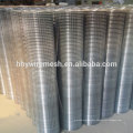 in rolls Galvanized welded wire mesh panel/ welded wire mesh