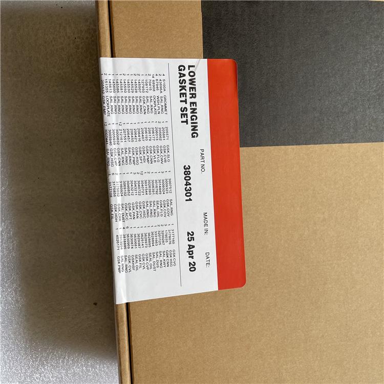 3804301 Lower Gasket Kit