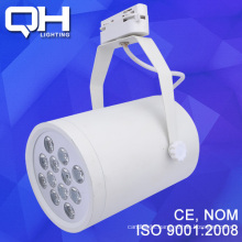 LED Bulbs DSC_8157