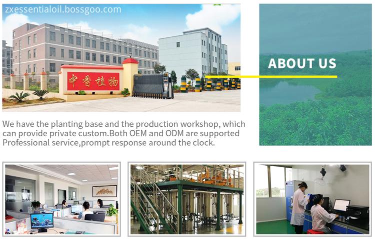 Ji'An ZhongXiang Natural Plants Co.,Ltd.