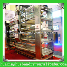 2014 new design biddy cage for poultry shed