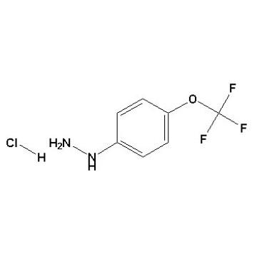 Clorhydrate de 4- (trifluorométhoxy) phénylhydrazine N ° CAS 133115-72-7