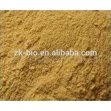 Polvo de extracto de semillas de apio orgánico natural con mejores ventas
