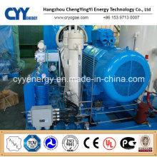 CNG34 Skid-Mounted Lcng CNG LNG Kombi-Tankstelle