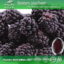Food & Beverages - Blackberry Fruit Powder, Blackberry Juice Powder, Blackberry Powder
