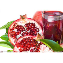 Pomegranate Juice Powder/Pomegranate Powder