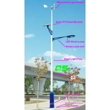 WPSRR-7704 3~15m Municipal Road Hot DIP Galvanized Steet Light Pole style