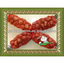 Kastanie aus Shandong China