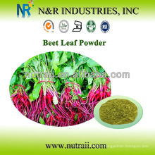 Proveedor confiable Polvo de raíz de remolacha