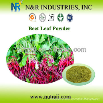 Reliable supplier Beet Root Powder