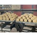 Alumina Ceramic Grinding Media balls 30mm